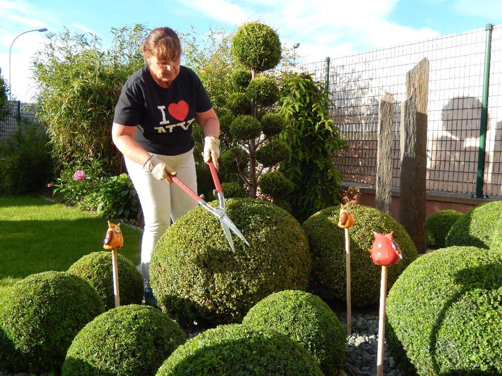 entretien jardin strasbourg